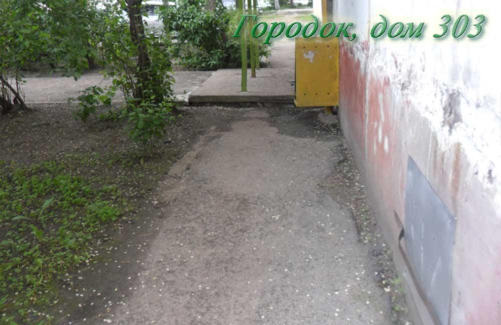 Дом 303